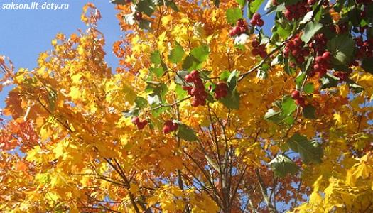 золотая осень стихи