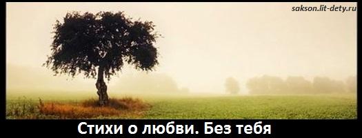 стихи о любви без тебя